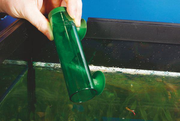 aquarium9.jpg