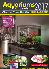 Aquariums & Cabinets 2017