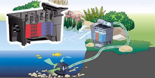 Fish pond filtration design basics gravity pond filtersg workwithnaturefo