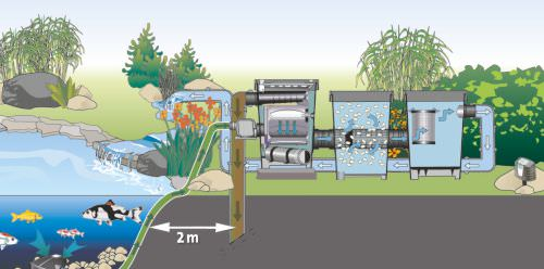 Fish pond filtration design basics for Koi pond pump system