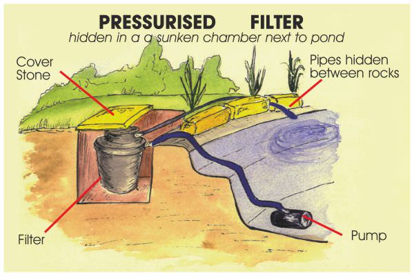 Pond filtration basics for Set up pond filter system