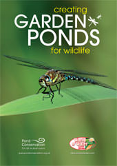 Creating Garden Ponds for Wildlife