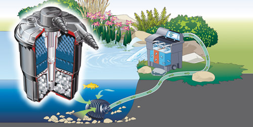 Fish ponds require filtration filtration keeps the water for Garden fountain filters
