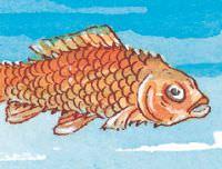 fish-ulcer.jpg
