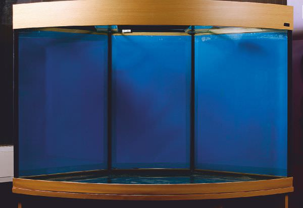 marine-aquarium-set-up-1.jpg