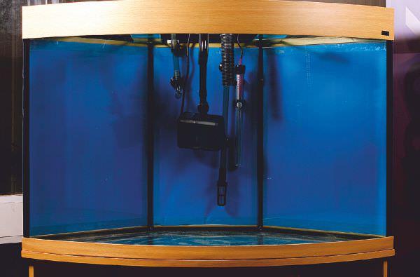 marine-aquarium-set-up-4.jpg