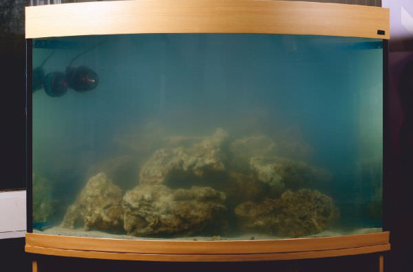 marine-aquarium-set-up-7.jpg