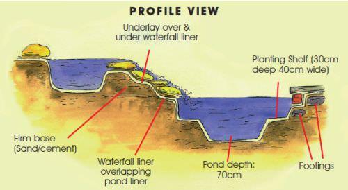 pond-design.jpg