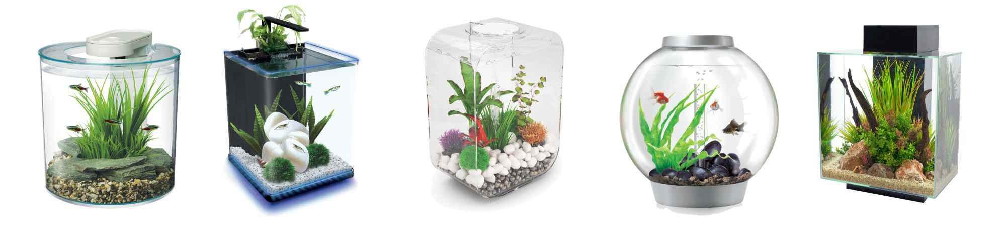 small-aquariums.jpg